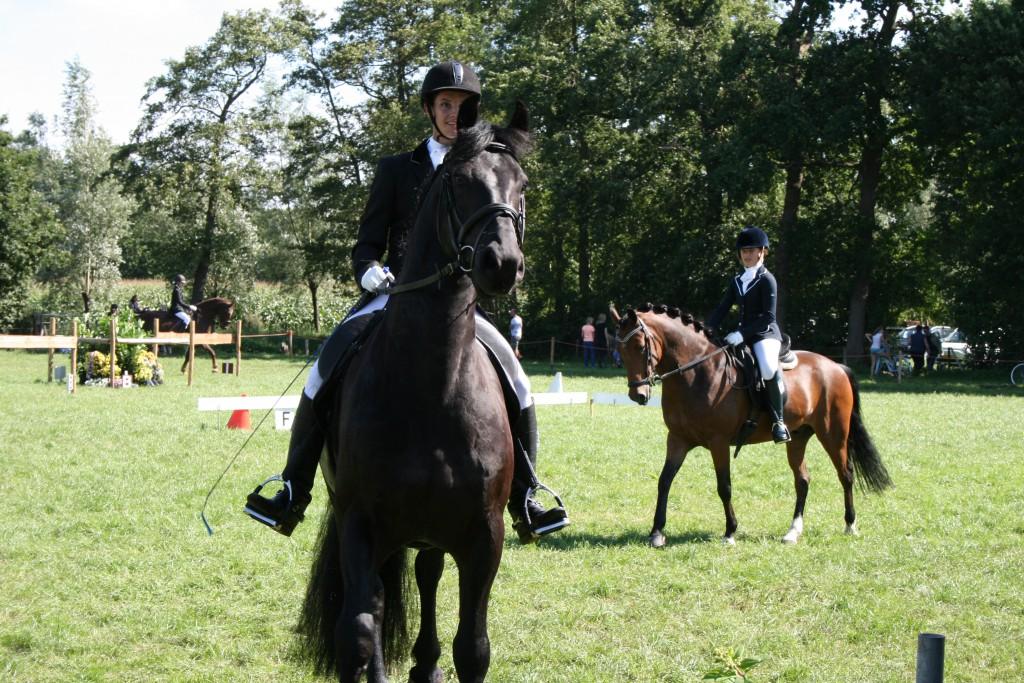Paarden wedstrijd