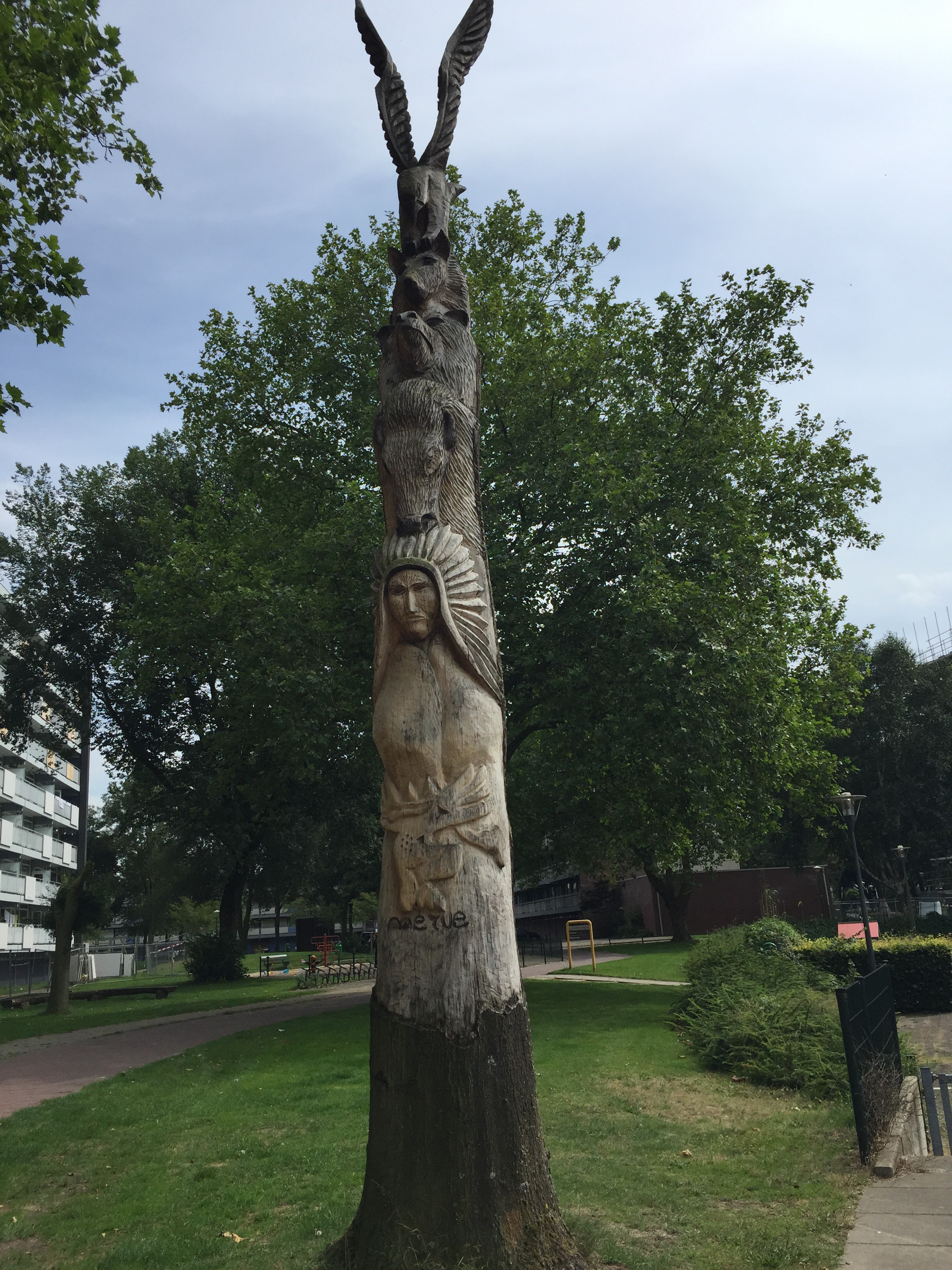 Wat je met een boom kan doen